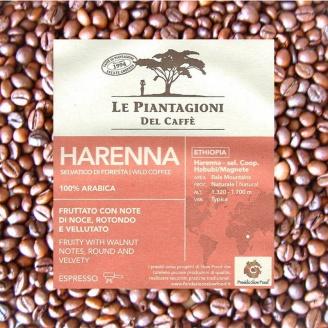 Harenna Le Piantagioni - Café Grains