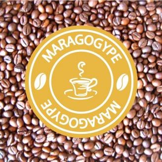 café maragogype grains 1kg