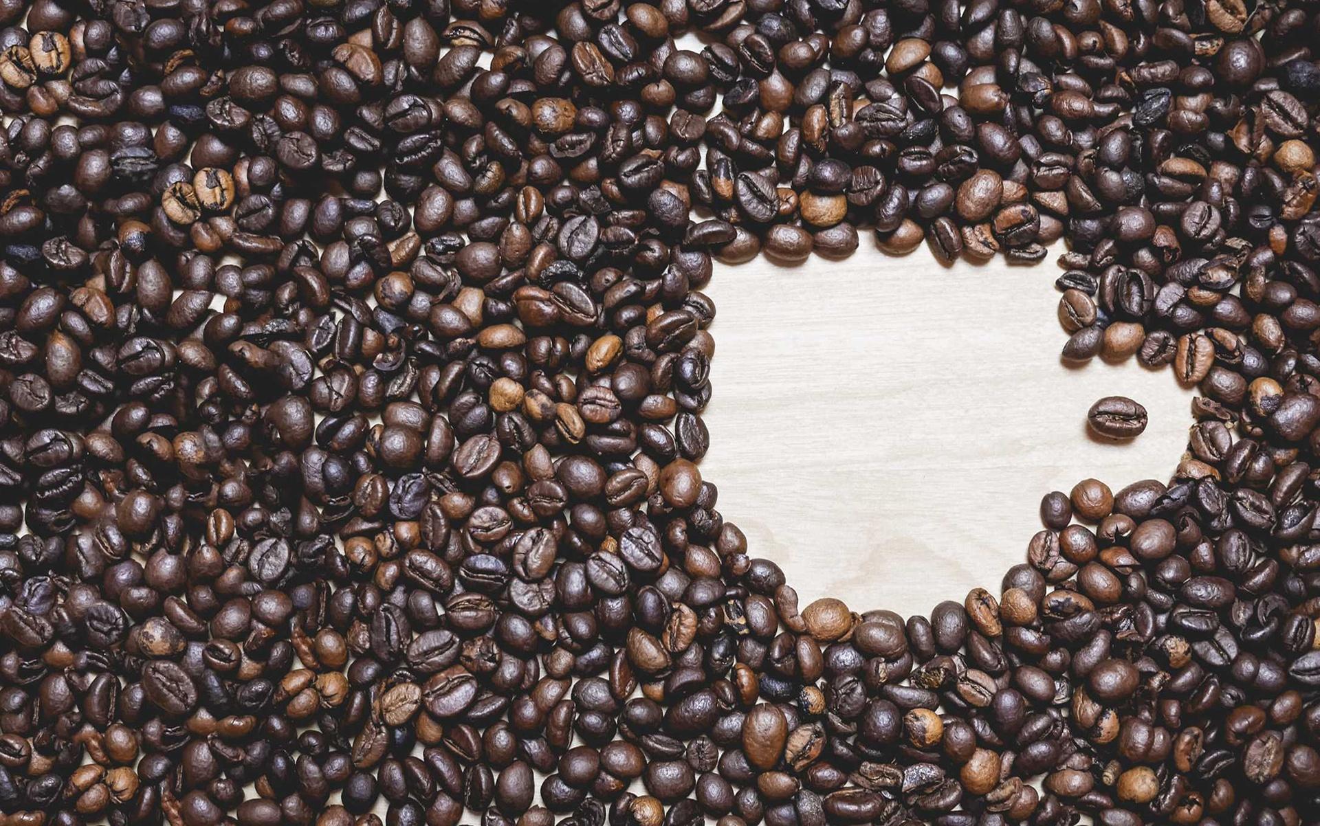 Comment bien choisir son type de café ?